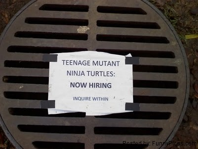 Teenage Mutant Ninja Turtles (TMNT) Hiring