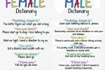 female vs male dictionary