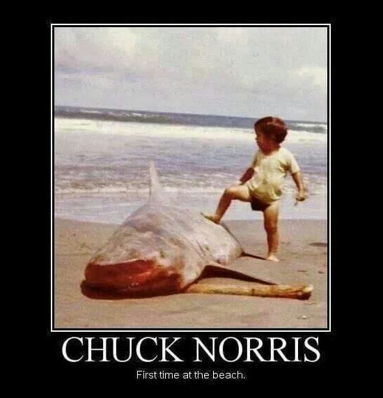 Chuck Norris First Time at the Beach
